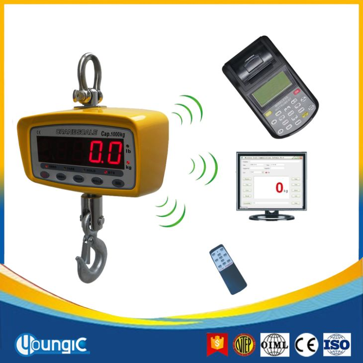 300KG Hanging From Overhead Crane Dignostic Weighing Scale