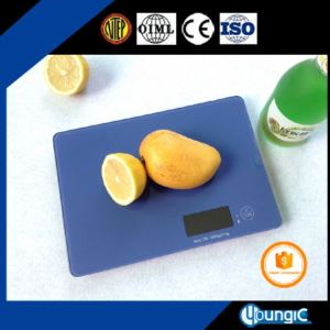Digital Bluetooth Salter Kitchen Scales