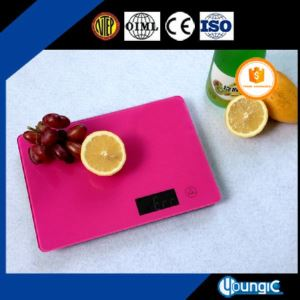 Electronic Taylor Target Food Weighing Scales