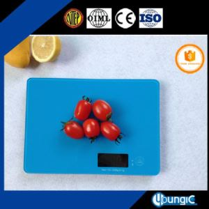 Bluetooth Scale for Weighing Food Measures Grams