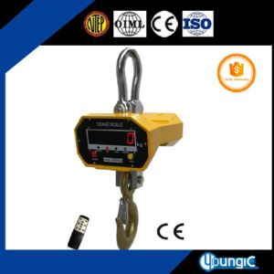 digital industrial crane scale