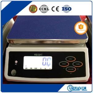 Bluetooth Economical Price Computing Scale Manual Balance Scale