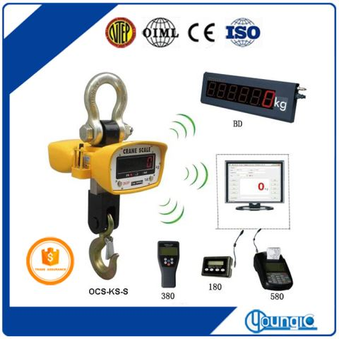 China 1000lb Digital Crane Weighing Scale For Sale
